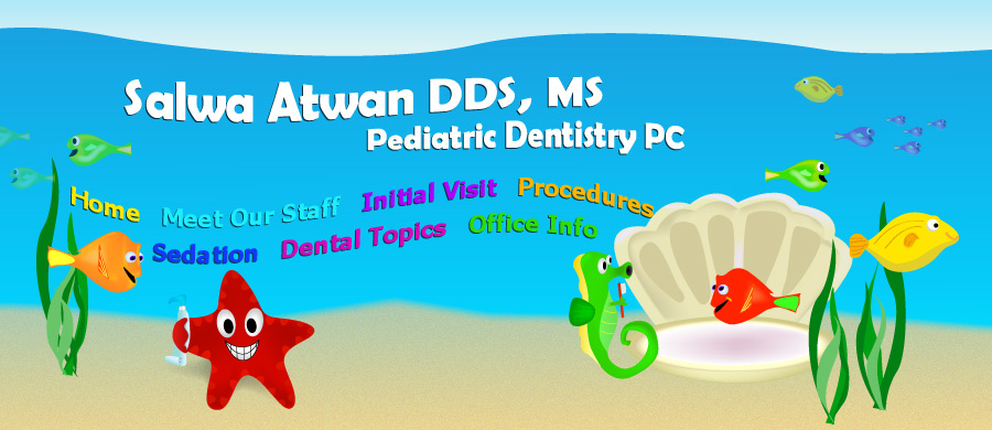 Pediatric Dentist In Plymouth Michigan Office Information